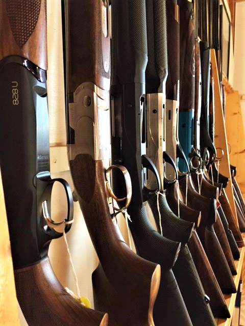 Row of Shotguns